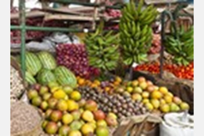 Cabinet Secretary warns that Kenyan fresh produce reputation is at stake - FreshPlaza.com
